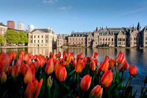 workshop fotografie met stadsgids, Beleef en bewaar Den Haag