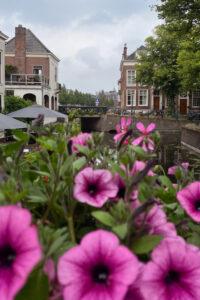 beleef en bewaar Den Haag